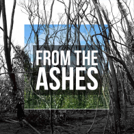 From the Ashes Album
